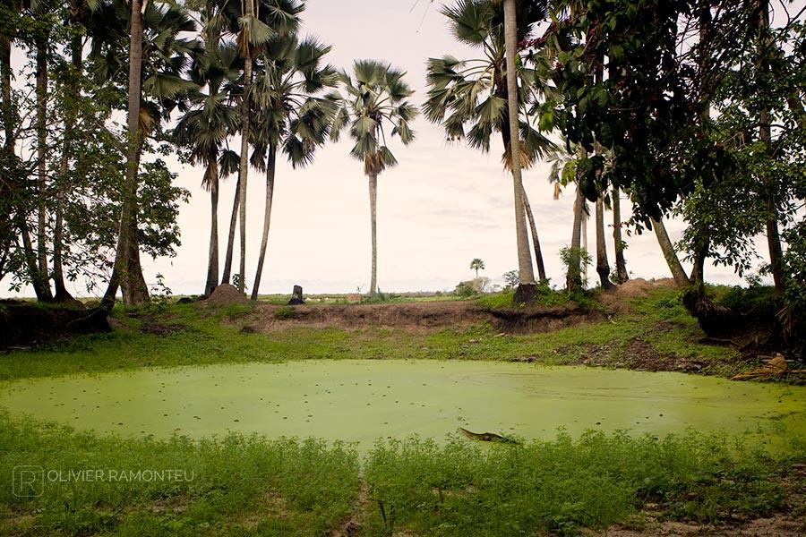 Enampore, Casamance, Sénégal, Afrique