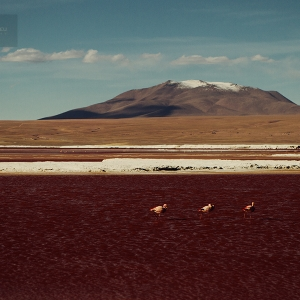photo-voyage-bolivie-sud-lipez-salar-uyuni-2012-08-112-900px