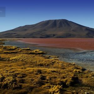 photo-voyage-bolivie-sud-lipez-salar-uyuni-2012-08-113-900px
