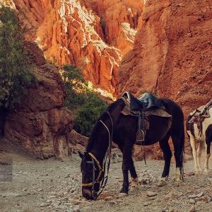 photo-voyage-bolivie-tupiza-2012-08-048-900px
