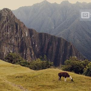 photo-voyage-perou-machu-picchu-2012-07-086-900px