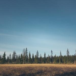 norvege suede voyage photographie roadtrip 2016 10 07896
